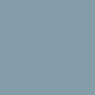 Серый RAL 7004